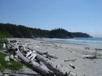 BC island beach