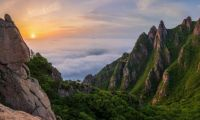 mountains, Wolchulsan, South Korea  4142