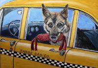Sarge cab co.