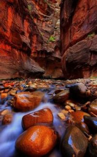 The Narrows is the slot canyon on the Virgin River in Zion National Park.