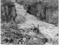 North Idaho loggers and logs in a wild river
