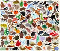 Charley Harper Lots of Creatures and Lots of Pieces