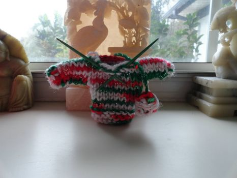 A Tiny Christmas Sweater.
