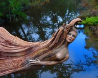 driftwood-spirit-sculptures-debra-bernier-coverimage