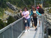 Grandfather Mountain Bridge Of Eternal Peril