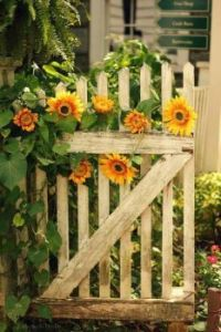 flowers on and in a fence
