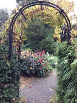 The garden at Benslow, UK