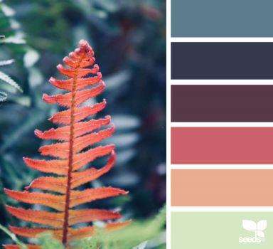 8_23_ColorFall_carolynDOTeve
