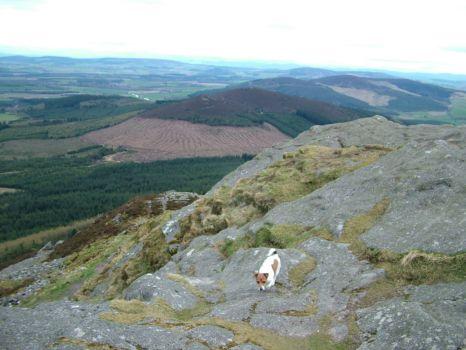 On top of Bennachie, Inverurie, Scotland