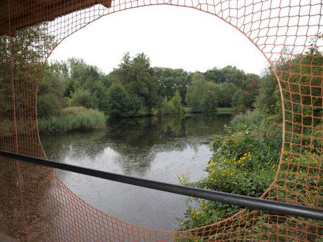 Rybník Čičák v parku Na Špici