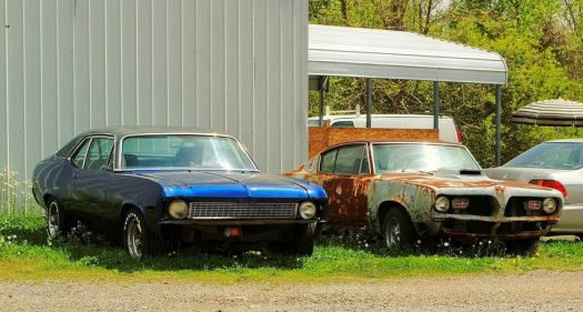 two old cars rusting away