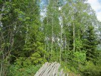 Rusko, Finland