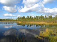 lake in Finnish Lapland