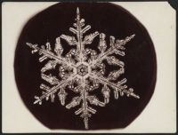 One Of The First Photos Of A Snowflake