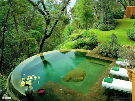 Backyard Haven