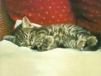 Sleeping Tight