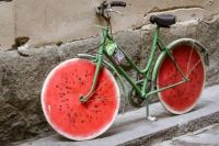 Green & Red Bicycle