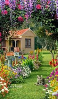 Cute house with colorful garden
