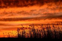 Last Sunset of 2015
