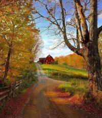 Take me home, country roads.....