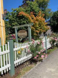 Street side Rose Garden in Victoria BC