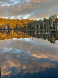 Urunga Wetlands, NSW Australia