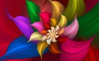 Colorful-Abstract-Flower-wide-Wallpaper