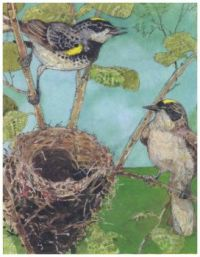 Warblers  ~ Jerry Pinkney