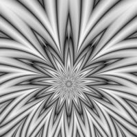 Floral Star burst in Black and White