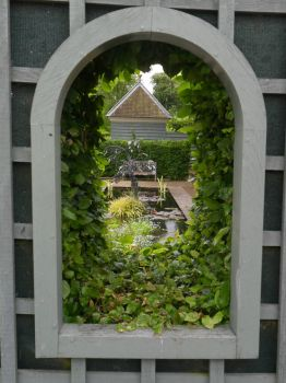 View through the window