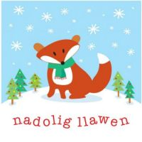 Nadolig Llawen (Merry Christmas) from Wales!!