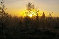 Sun rise in Lapland