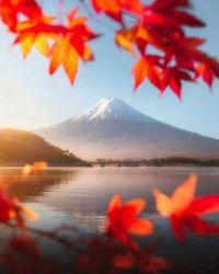 An Autumn day at Mount Fuji