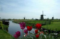 Holland Windmills For Helen