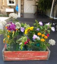 Classic Flowers in a Classic Container