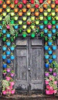Rainbow Flower Pots