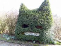 Cat Shaped Hedge (1)