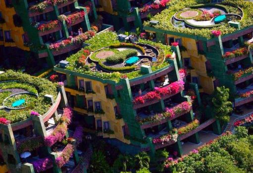 Theme: Green Living - Botanical apartment therapy in Phuket, Thailand
