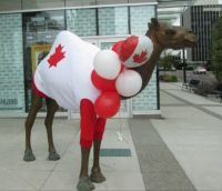 Happy Canada Day !