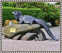 Southland's  Tuatara Dinosaur.