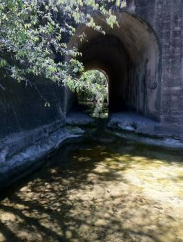 Abandoned tunnel under railway ~ DK's in TX