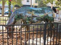 Ocala, Fl horse #4