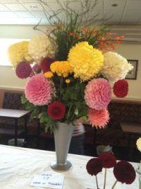 My Dad's flowers 2015
