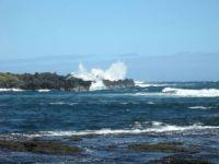 Hawaii Coatline
