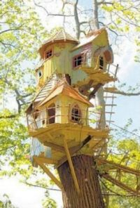 Treehouse, Norfolk, England