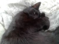 Raven hugging herself