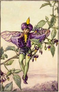 The Nightshade Fairy (smaller size)