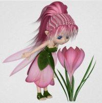 Crocus Fairy