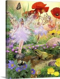 fairies-and-the-frog,