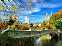 Bow Bridge Central Park- NY